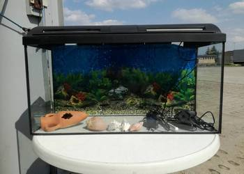 100l akwarium z akcesoriami