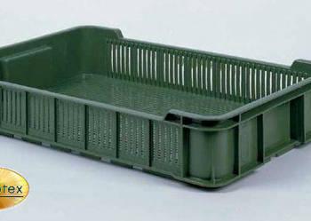 Skrzynka Skrzynki Plastikowe 10kg OZN NOWE Czeszka