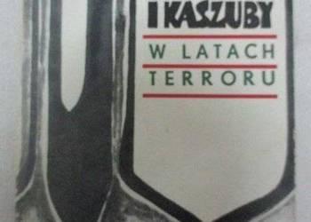 Pogranicze i Kaszuby w latach terroru - Czechowicz Andrzej