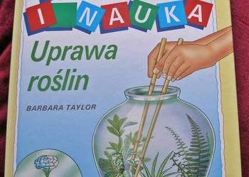 Uprawa roślin - Barbara Taylor