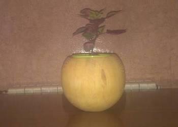 Doniczka kula drewniana wisząca lub stojąca