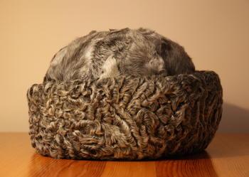 Elegancka czapka karakułowa