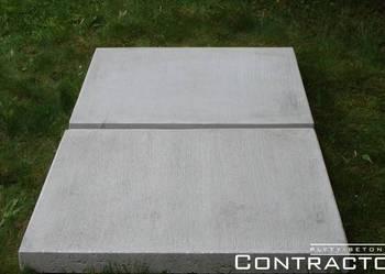 Płyta ogrodowa 80x80x8 cm