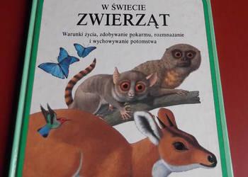 W świecie zwierząt