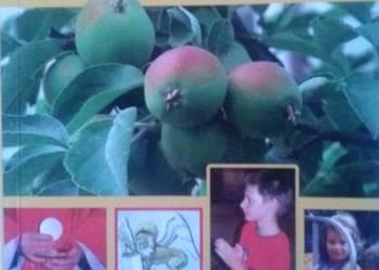 Abyście szli i owoc przynosili
