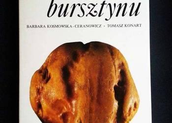 Tajemnice bursztynu - KOSMOWSKA   F.