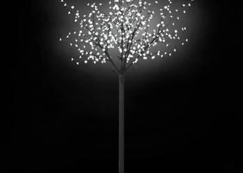 daXL Kwitnące drzewko świąteczne  50689