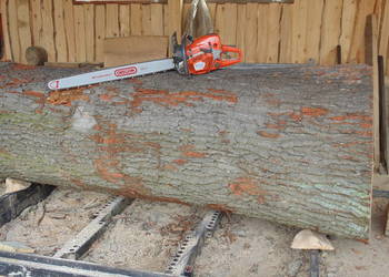Usługi tartaczne cięcie drewna trak taśmowy Izdebnik