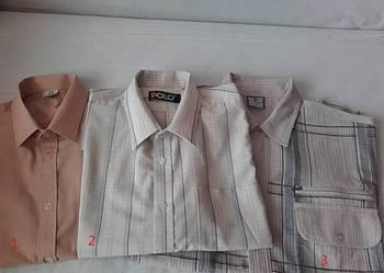 Koszule męskie z krótkim rękawem.