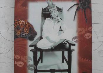 W dżungli życia - Beata Pawlikowska