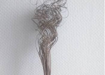 Trawa kręcona bukiet susz 70 cm
