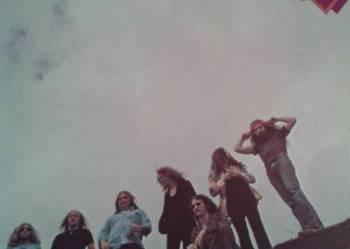 Lynyrd Skynyrd - Nuthin' Fancy,75, lp