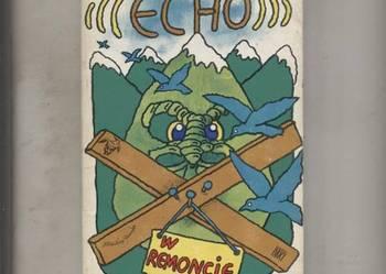 Echo w remoncie