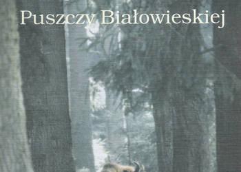 Eseje o ssakach Puszczy Białowieskiej - Praca zbiorowa.