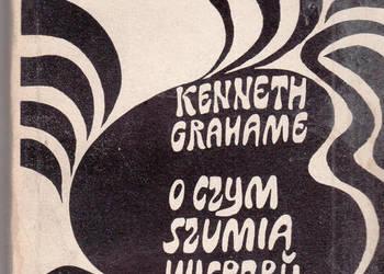 (02815) O CZYM SZUMIĄ WIERZBY – KENNETH GRAHAME
