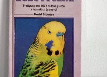Książka, zwierzęta – Ptaki Egzotyczne.