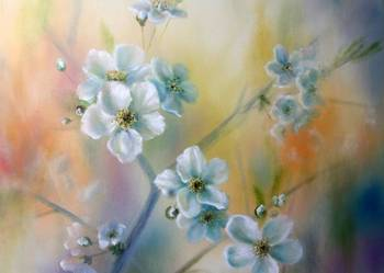 Kwiaty wiśni, 50x50 cm, L.Olbrycht