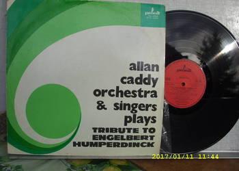 ALLAN CADY ORCHESTRA; --POP, winyl LP