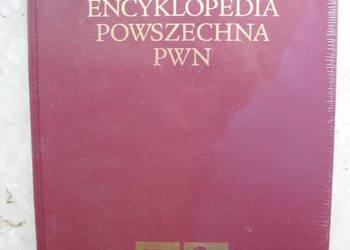 Nowa Encyklopedia Powszechna PWN Tom 5 folia