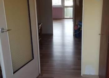 Mieszkanie 50 m2 po remoncie Ogrody
