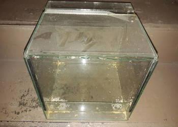 Terrarium Szklane 25x25x25