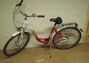 Oferta: Rower damka miejski Hattrick