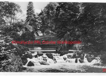 Pocztówka Post card Bad Muskau Wasserfall am Eichsee