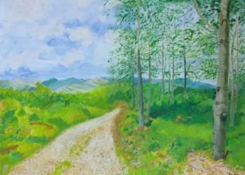 Obraz 70x50, akryl na płótnie - pejzaż, góry