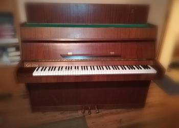 Oryginalne pianino Calisia
