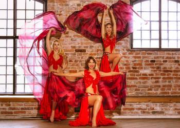 Pokazy tańca brzucha, tancerki belly dance