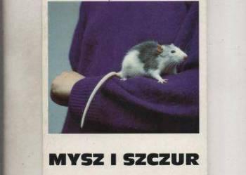 Mysz i szczur w hodowli domowej