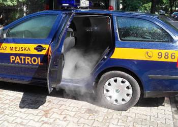 Ozonowanie - Dezynfekcja - aut