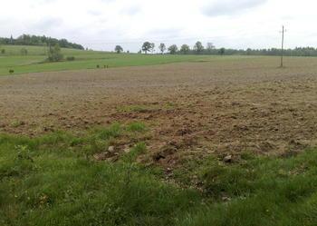 Działka  o powierzchni 2.51 ha