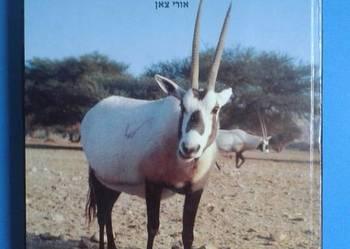 """Fauna Biblii חלום שהתגשם :עולם החי של ארץ התנ""""ך - """"חי בר"""