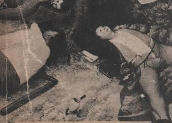 W KRAINIE PIECZONYCH GOŁĄBKÓW - MANN HENRYK