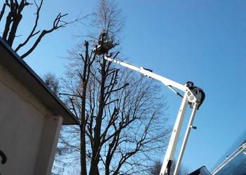 wycinka drzew pielęgnacja podnośnik koszowy zwyżka