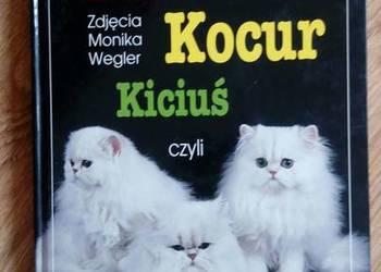 Kotek,kocur,kiciuś czyli wszystko o kotach - Helga Hofmann