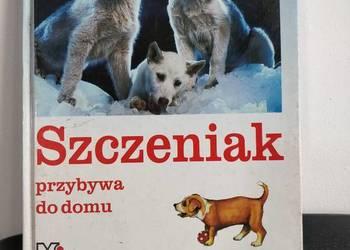 Książka, zwierzęta, psy – Szczeniak przybywa do domu.