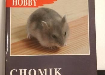 Książka, zwierzęta, Chomik Dżungarski.