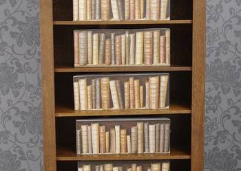 Regał Biblioteka 4948