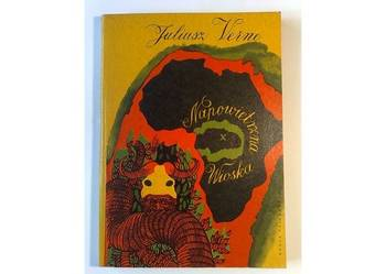 Juliusz Verne: Napowietrzna wioska