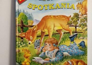 Książka, bajkia dla dzieci w twardej oprawie.