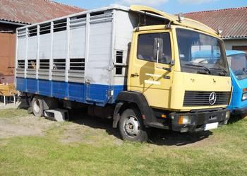 Mercedes Benz - przewóz zwierząt