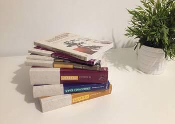 Książki Opracowania lektur szkolnych