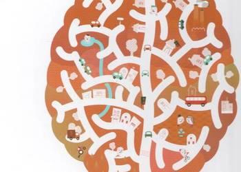 Sen Alicji czyli jak działa mózg