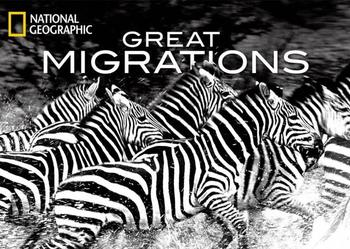 !!!Great migrations !!