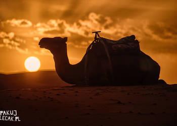 Niezwykła fotowyprawa do Maroka! Wrzesień 2018