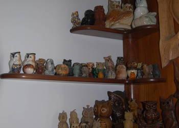 Kolekcja SOWY zbierane od 35 lat