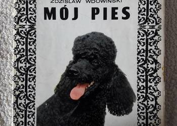 Mój pies – autor Zdzisław Wdowiński