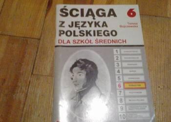 Ściaga z języka polskiego -Romantyzm